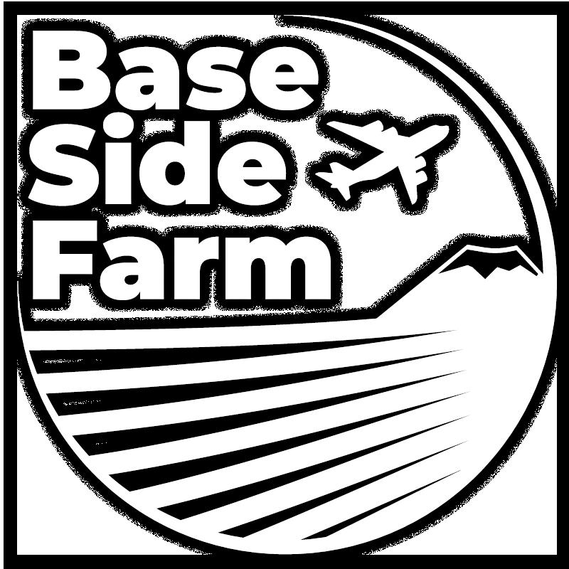 BSF-Site